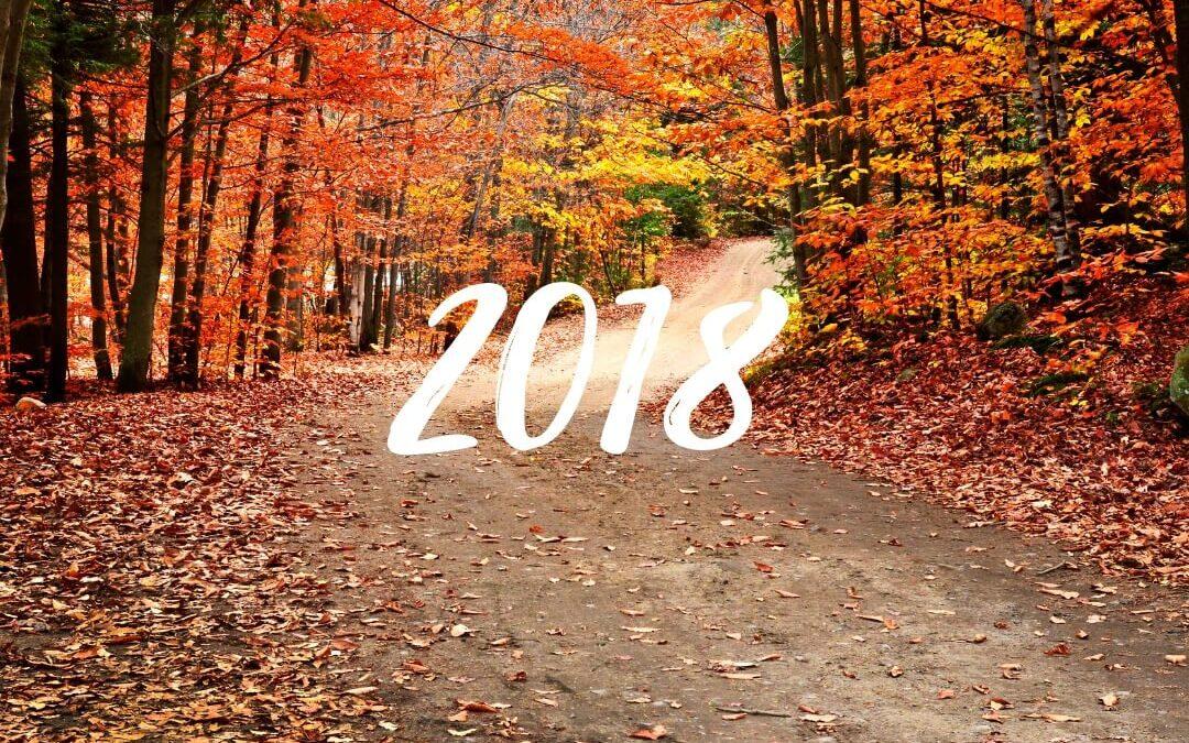 Rekordzahl der Teilnehmer am diesjährigen Herbsttreffen